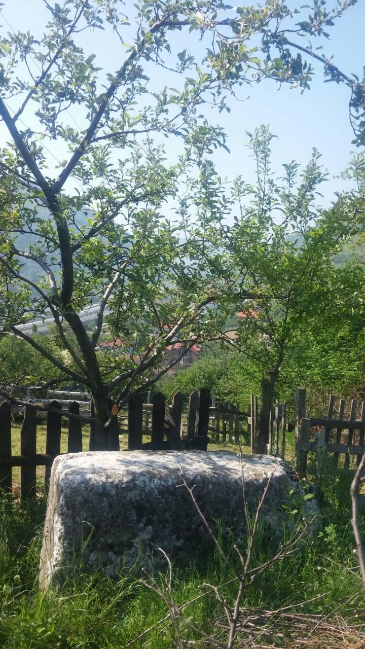 Danas smo popisivali stećke u Papratnici, Jukama i Tičićima